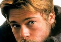 Brad Pitt Photo Beard