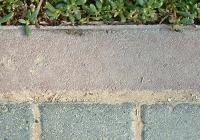 Grass adn Pavemante Texture Map