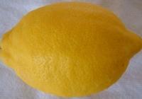 Free Lemon Texture