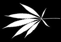 Free Cannabis Leaf Texture Mask