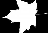 Maple Tree Leaf Texture Mask