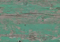 Free Green Painted Wood Texture