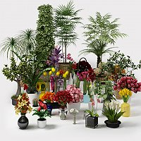 CGAxis Bundle Flowes & Plants Commercial 3D Models