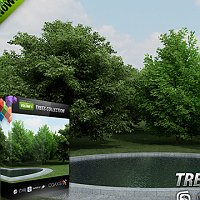 CGAxis models volume 5 trees collection Commercial 3D Models