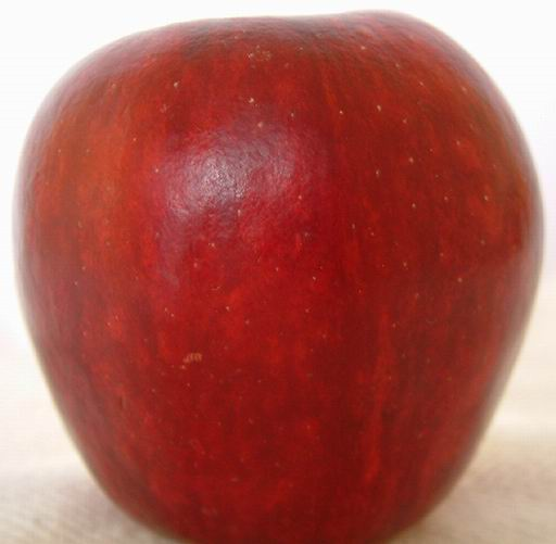 Fruits And Vegetables Free Red Apple Texture Image Gallery
