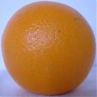 orange_side.jpg
